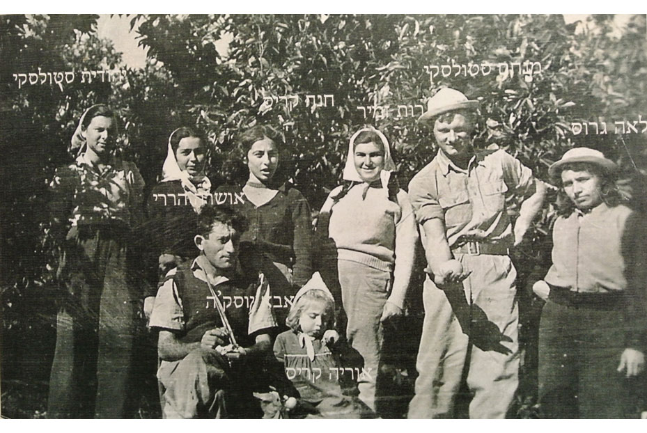 1947 - קבוצת הקטיף של אביחיל בפרדס.